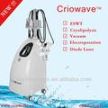 La terapia de grasa& pérdida de peso del cuerpo masaje vibrador máquina( crio de onda)