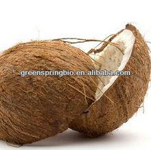 China manufacturer wholesale market coconut shell charcoal,indonesia coconut shell charcoal,coconut shell charcoal for sale
