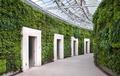 come piantare un giardino verticale