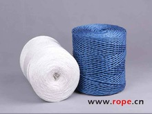 China Factory PP film twisted string