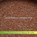 mijo secos de alta calidad al por mayor 2013 nueva llegada
