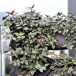 Garden kit portable waterproof decorative wall planter