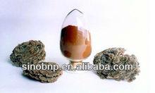 BNP Supply Reishi Mushroom Extract/yunzhi mushroom extract