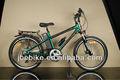 Città/mountain bike, telai in carbonio cinese