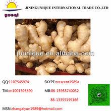 2013 new crop EU market half dry ginger