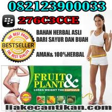 OBAT DIET FRUITPLANT obat diet herbal 082123900033