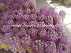 2014 china wholesale red garlic