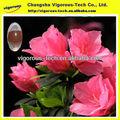 Porcellana produttore estratto di rododendro/p rododendro. E.