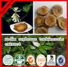 100% Natural Radix Sophorae Tonkinensis Extract;subprostrate sophora;Vietnamese Sophora Root Extract