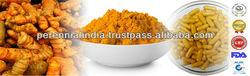 Curcumin 95% (GMP Certified) / Fresh turmeric, Turmeric Root Extract Powder 95% Curcumin, pure curcumin powder