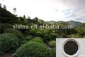 el té verde té mee 9370 por el líder téverde de fábrica en china
