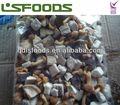 2014 de la alta calidad nueva cosecha congelado camote iqf mezclada setas