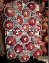 china apple fruit market prices qinguan apple (apple:fuji, huaniu, gala, golden,qingguan, red star)