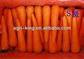 emballage sous vide légumes frais carottes fraîches