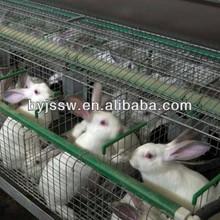 Custom Rabbit Hutch China