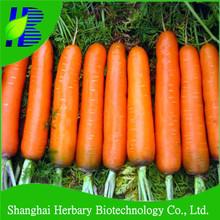 F1 Hybrid carrot seeds for planting