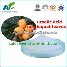 best quality ursolic acid loquat leaves extract