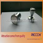 Metallic magnet button