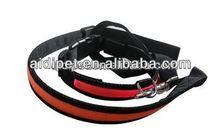 LED luminous webbing for dog leash