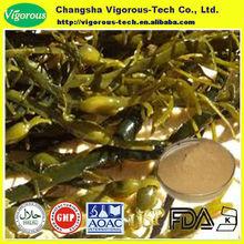 100% naturale ascophyllum nodosum estratto/ascophyllum nodosum estratto in polvere/ascophyllum nodosum