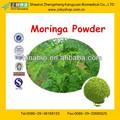 polvo de Beneficios granel Salud hoja de Moringa