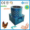 high quality stainless steel fresh chicken feet poultry slaughterhouse for cat