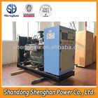 Green Power Small Bio Generator With 30KW