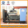 China factory magnetic electric engine biogas genset price
