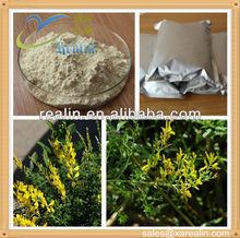 Broom Extract/Genista Tinctoria Extract Genistein