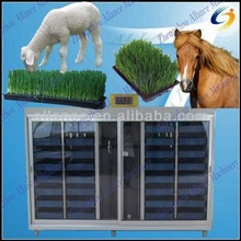 High quality ! hydroponic grass growing room for horse,lamb,goats,sheep,poultry,livestock,animal