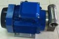Yb-65 304ss pompa a palette per diesel kerosne trasferimento di benzina 12v dc, 24v, 110v 220v ac pompa elettrica