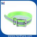 1'' ancho de moda para perros de caza cuello& sin cuello, de la cinta de tpu para collar de perro