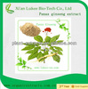 100% Natural Water Soluble Ginseng Extract Powder