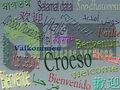 L'homéopathie- service de transcription en suisse