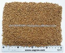 New crop Coriander seeds/plant seeds/spice seeds