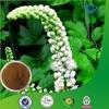 100% Natural Black Cohosh Root Extract Powder
