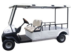 two seat golf car