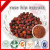 2014 Natural Rose hips Extract /Rose Hip P.E./5% -20% Polyphenol/Vitamin C 5%