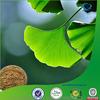 ginkgo flavone glycosides, natural ginkgo biloba extract, natural ginkgo biloba p.e