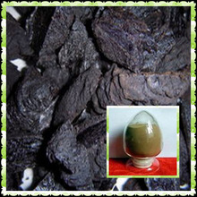 High Quality Shu Di Huang Ratio Extract 4:1 Radix Rehmanniae Preparata Extract