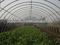 greenhouse galvanized tubular structure