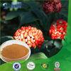 Top quality natural panax notoginseng saponins