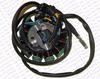 /product-gs/magneto-stator-12-pole-5-wire-200c-250cc-cg-bashan-shineray-jinling-taotao-dirt-pit-bike-atv-quad-parts-1635080172.html