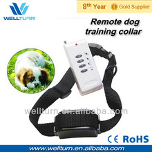 Cheap dog collars sport directive dog collar
