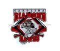 béisbol insignia el logotipo del equipo pin badge deportes pin badge