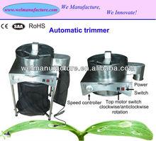 China hydroponics