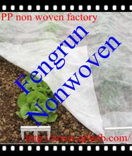 pp spunbond non woven eco friendly plant protect