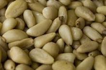 selling pine nuts cedar nuts