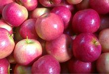IDARED fresh apples