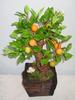 Fruit tree Clay Flowers